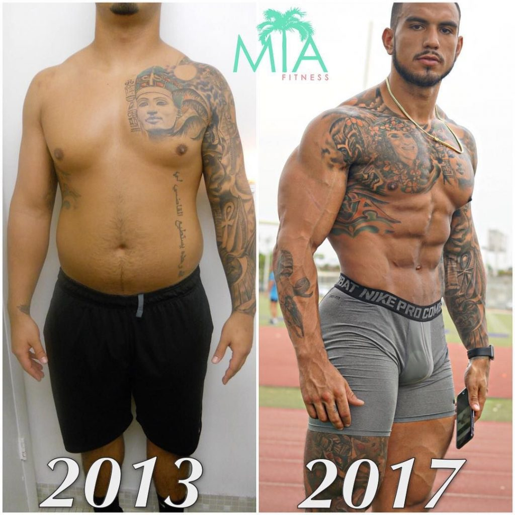 fat to muscular body