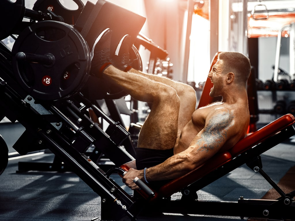 Legs include 5 of the 10 largest muscles in the body